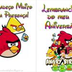 Angry Birds – Livrinho de Atividades!!