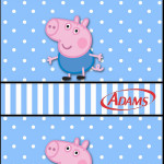 Rótulo Chiclets Adams George Pig (Peppa Pig):