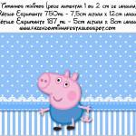 Rótulo Champagne, Vinho e Espumante George Pig (Peppa Pig):