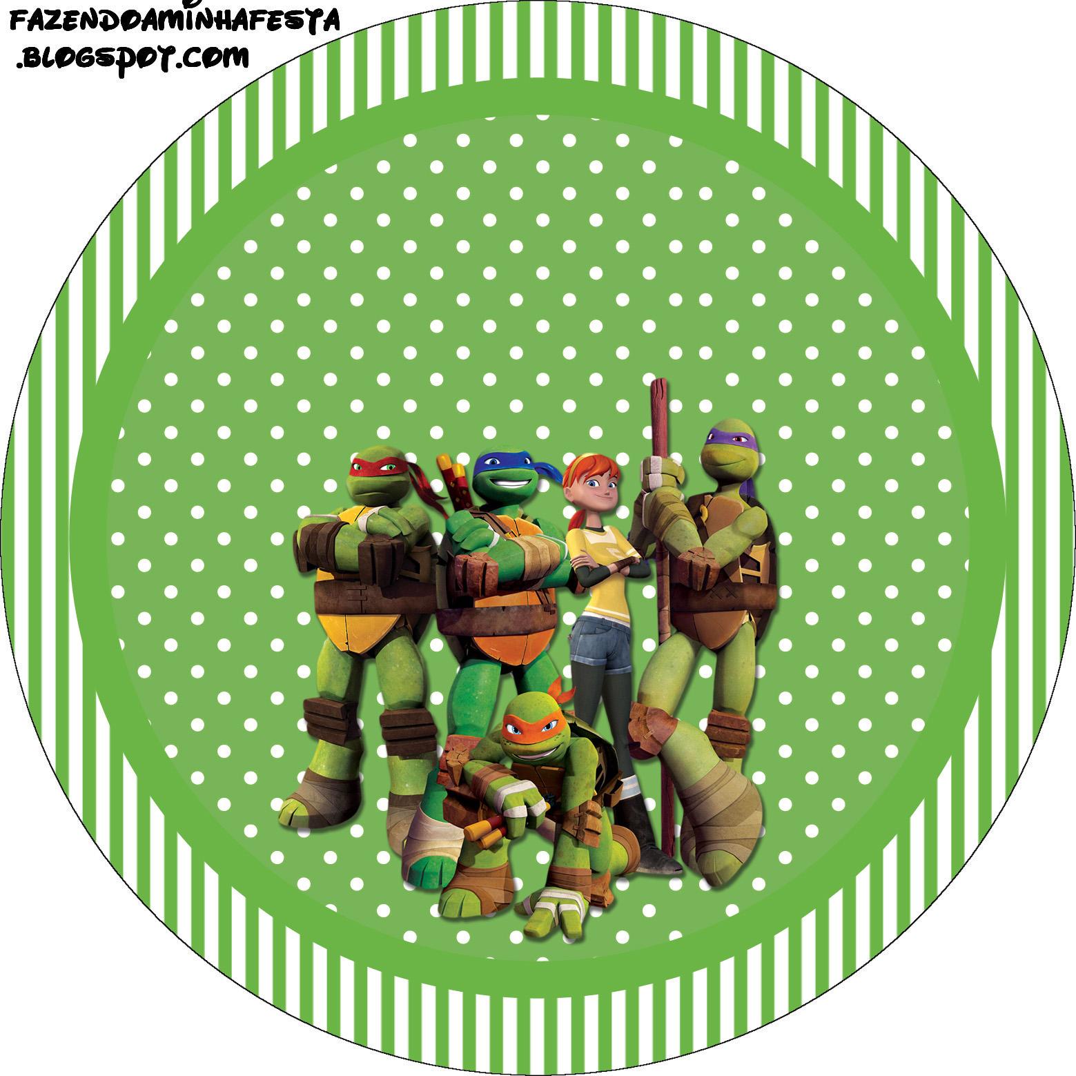 Festa Infantil Tartarugas Ninja | Elo7