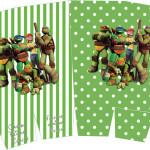 Caixa Pipoca Tartarugas Ninjas: