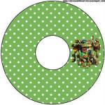 CD DVD Tartarugas Ninjas: