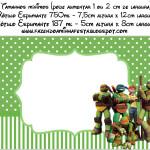 Rótulo Champagne, Vinho e Espumante Tartarugas Ninjas: