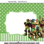 Tampa Marmita Grande Tartarugas Ninjas: