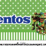 Rótulo Mentos Tartarugas Ninjas: