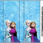 Pirulito Mastigável Frozen Disney - Uma Aventura Congelante: