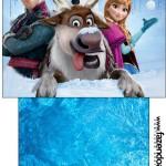 Saquinho de Chá Frozen Disney - Uma Aventura Congelante: