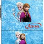 Rótulo Chiclets Adams Frozen Disney - Uma Aventura Congelante: