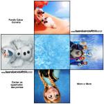 Convite Caixa Fundo Frozen Disney - Uma Aventura Congelante: