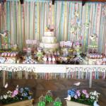 Tema: Batizado Passarinho Rosa – Festa da Leitora Heloisa Nádia!