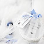 Chá de Bebê Tema: Passarinho Azul – Festa da Leitora  Mariana Thais Moura!