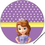 Rótulos para: Latinha,Gelatina,Tampinhas,Adesivos,Marmita Redonda e Toppers Cupcakes  Princesa  Sofia da Disney: