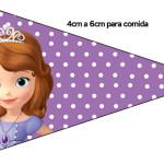 Bandeirinha  Princesinha Sofia da Disney: