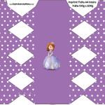 Caixa de BalaPrincesa Sofia da Disney:
