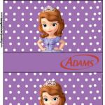 Rótulo Chiclets Adams Princesa Sofia da Disney: