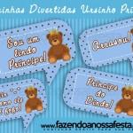 Plaquinhas Divertidas para Fotos Ursinho Príncipe!
