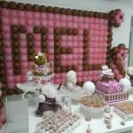 Tema: Ursinha Marrom e Rosa – Festa da Leitora Juliana Yamada!