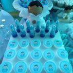 Tema: Batizado – Festa da leitora Luciana Bazilio Coelho!