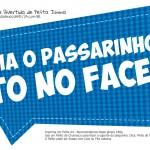 Plaquinha Divertida Festa Junina Essa vai pro Face