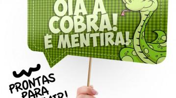Plaquinha Festa Junina Óia a Cobra Modelo