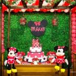 Tema: Minnie Vermelha – Festa da Leitora Anágela Siebra!