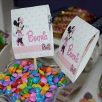 Tema: Minnie Rosa – Festa da Leitora Re Amaro!