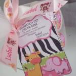 Tema: Safari Rosa – Festa da Leitora Raquel Modena!