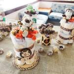 Chá de Bebê Safari – Festa da Leitora Sandra!