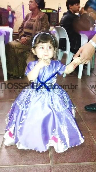 Decoração Princesa Sofia: