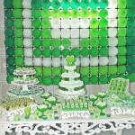 Decoração Festa Sapinho