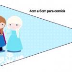 Bandeirinha Frozen Cute Roxo e Azul 1