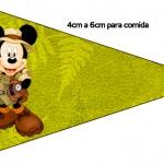 Bandeirinha Sanduiche 3 Mickey Safari