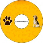 CD DVD Cachorrinho Beagle