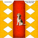 Caixa Bala Cachorrinho Beagle