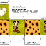 Caixa Bis Mickey Safari