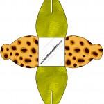 Caixa Fundo Safari