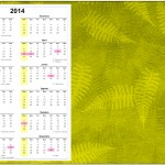Convite Calendário 2014 2 Fundo Safari
