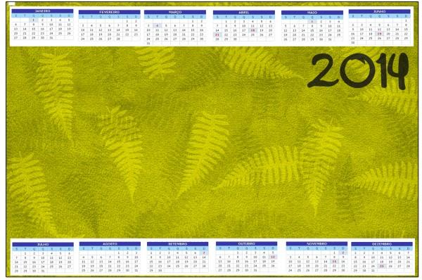 Convite Calendário 2014 Fundo Safari