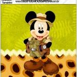 Molde Quadrado Mickey Safari