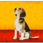 Rótulo Champagne, Vinho e Espumante Cachorrinho Beagle