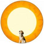 Rótulo Latinhas, Tubetes Cachorrinho Beagle