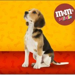 Rótulo Mini M&M Cachorrinho BeagleRótulo Mini M&M Cachorrinho Beagle