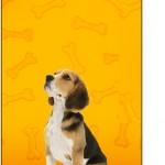 Tag Agradecimento Cachorrinho Beagle