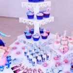 Oficina de Cupcakes Frozen