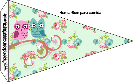 Bandeirinha Sanduiche 3 Corujinha Vintage Rosa e Verde