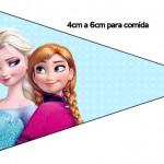 Bandeirinha Sanduiche 3 Frozen Azul