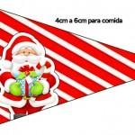 Bandeirinha Sanduiche 4 Natal Vermelho e Verde