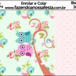 Bisnaga Brigadeiro Corujinha Vintage Rosa e Verde