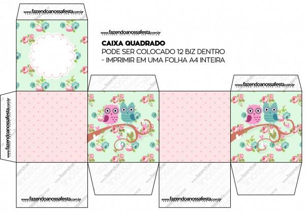 Caixa Bis Corujinha Vintage Rosa e Verde