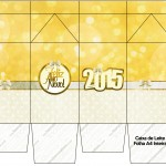 Caixa de Leite Ano Novo 2015